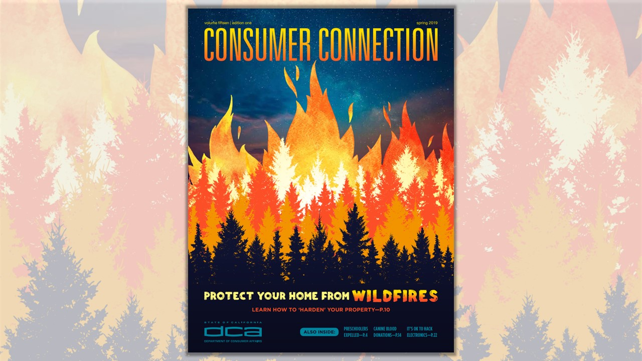 Image of the Spring 2019 edition of the Consumer Connection magazine